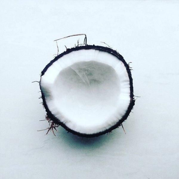 Circle, Still life photography,