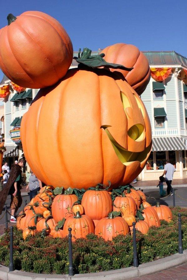 Amazing Disneyland Jack O Lanterns