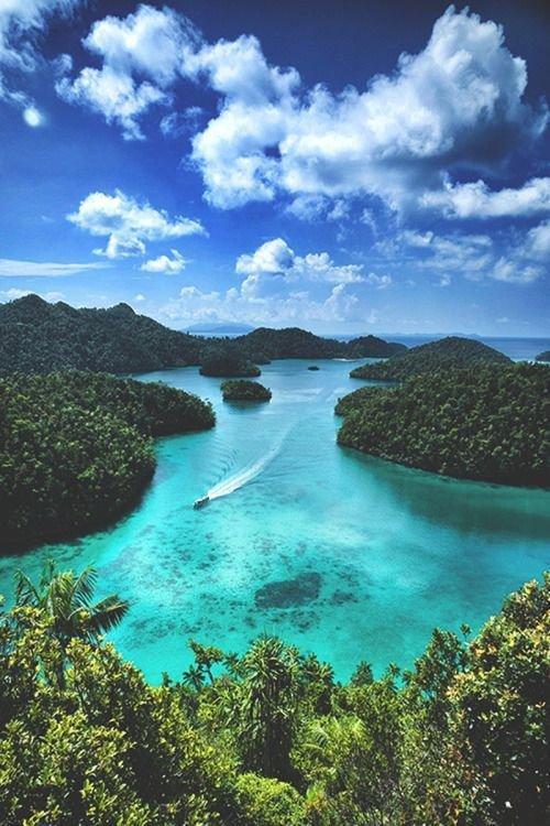 nature, sky, water, nature reserve, vegetation,