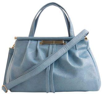 Blueberry Juice Bag