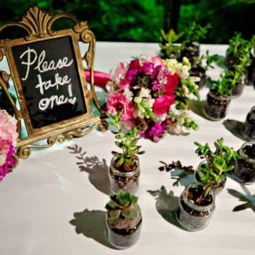 Succulent Wedding Favor Bottles