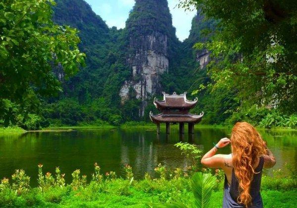 nature, vegetation, nature reserve, ecosystem, botanical garden,