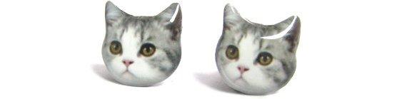 Kitten Studs