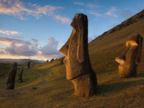 Hide among Easter Island's Giants