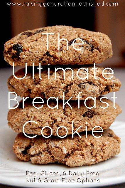 The Ultimate Breakfast Cookie :: Dairy, Egg, Gluten & Refined Sugar Free :: Nut & Grain Free Options