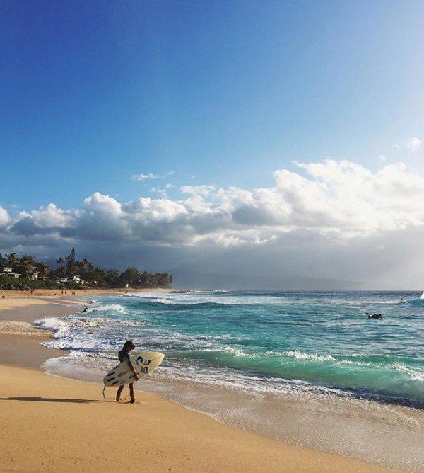 sea, beach, ocean, vacation, shore,