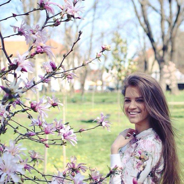 flower, blossom, plant, pink, cherry blossom,
