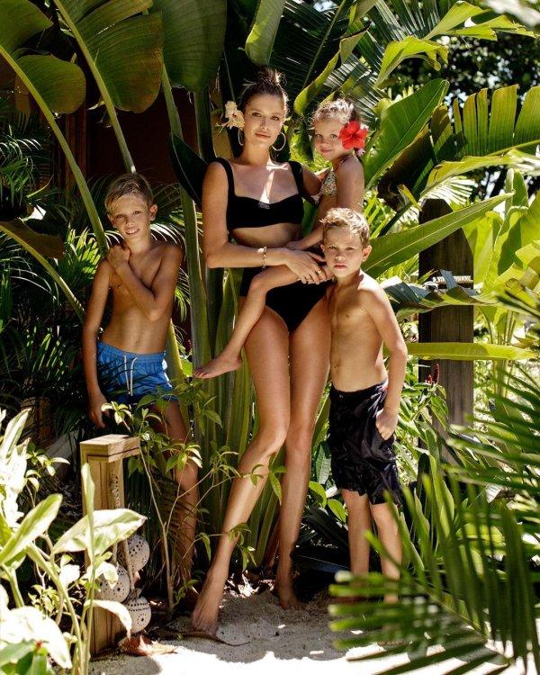 Botany, Jungle, Plant, Vacation, Palm tree,