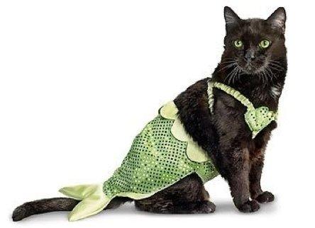 Mermaid-Cat