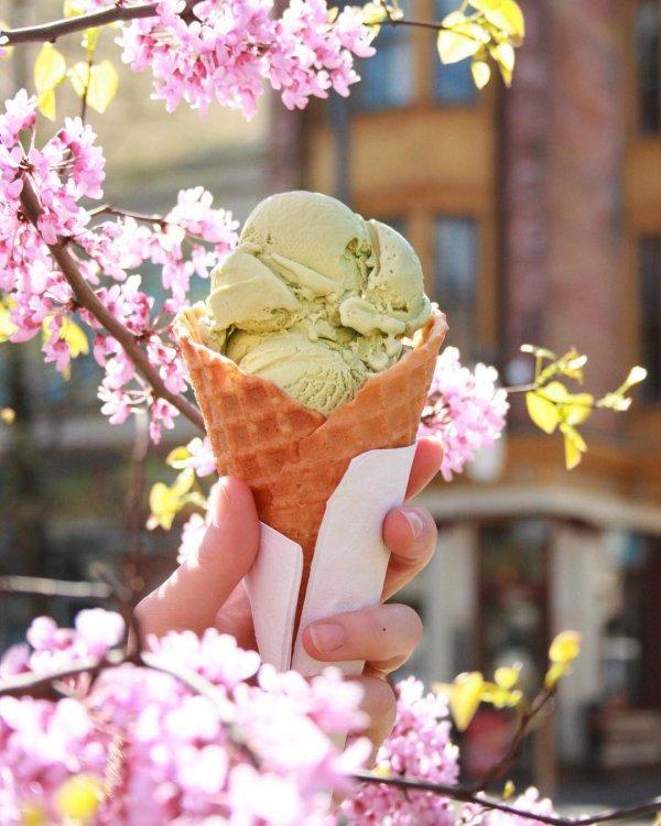 ice cream, pink, gelato, ice cream cone, dairy product,