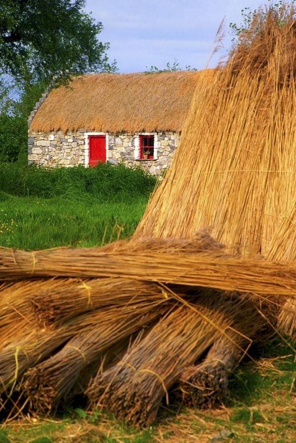 Thatching, Ireland