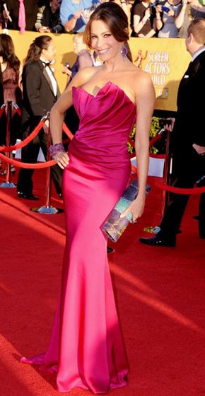 The SAG Awards Red Carpet - Sofia Vergara
