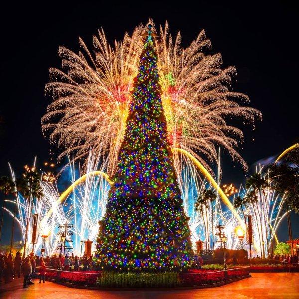 tourist attraction, christmas tree, tree, christmas decoration, night,