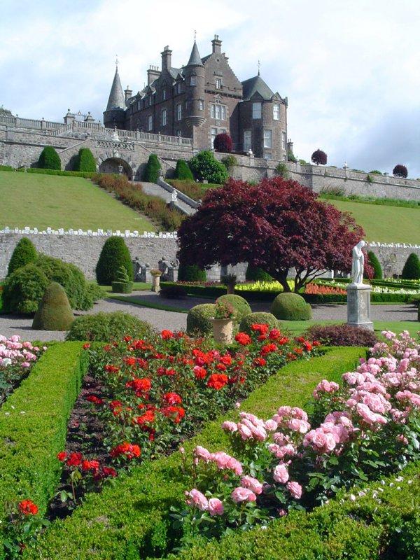 flower, estate, garden, building, spring,