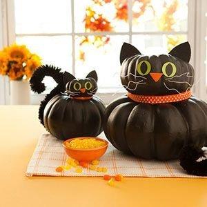 Kitty Pumpkins