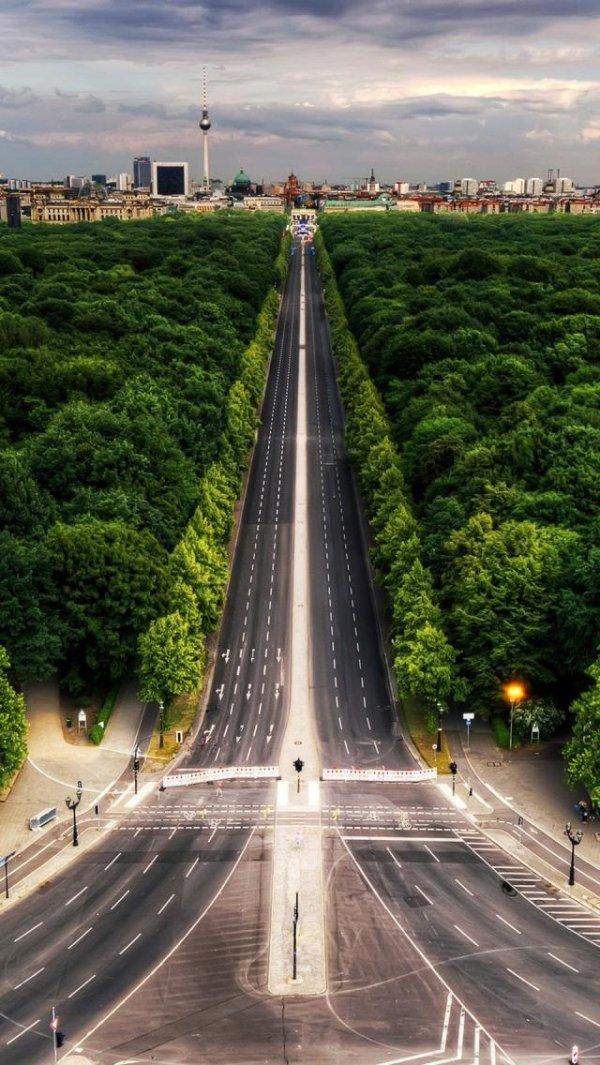 Find Peace in the Tiergarten