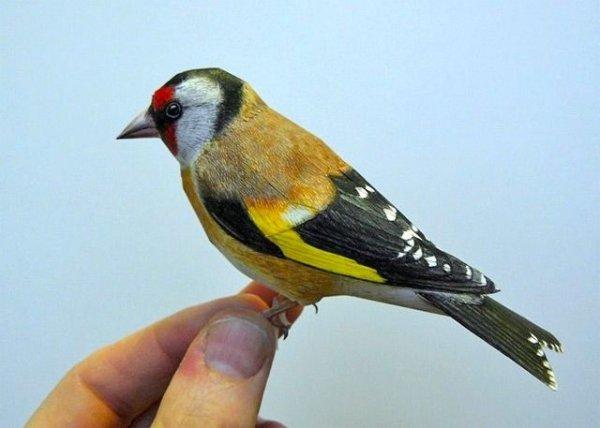 Paper-Craft Bird
