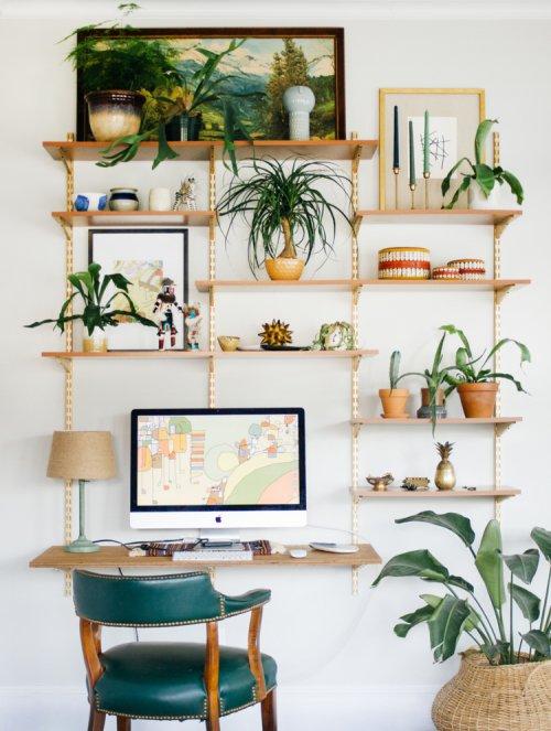green, room, shelf, wall, shelving,