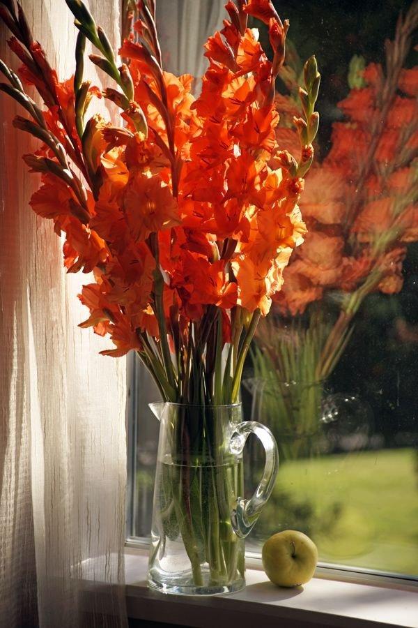 Gladiolus Make Such a Beautiful Arrangement
