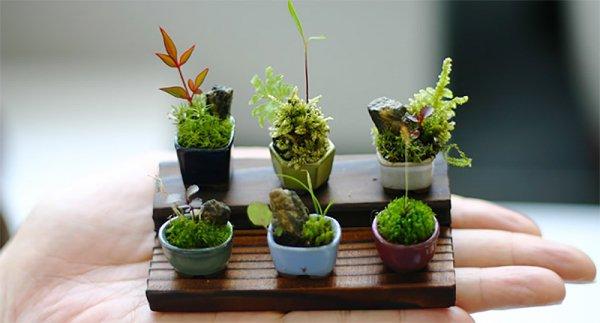flower arranging,floristry,plant,flower,floral design,