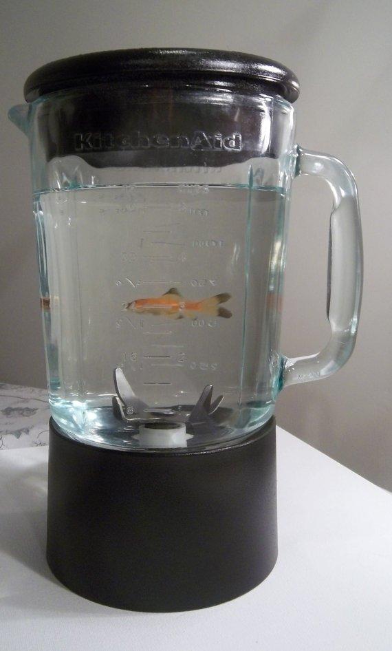 cup,small appliance,lighting,drinkware,mug,