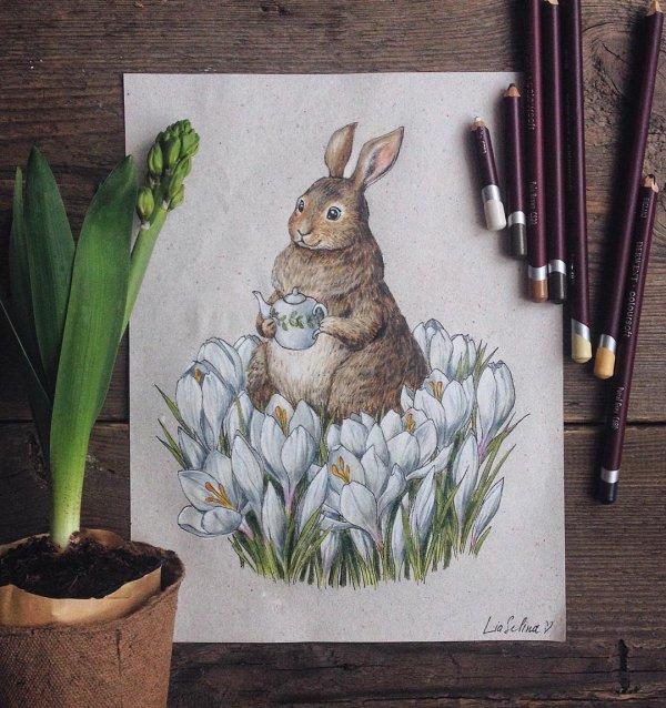 Bunny in Crocuses