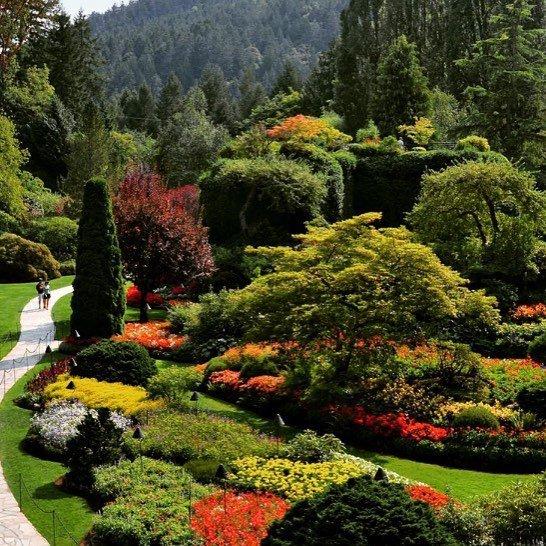 garden, botanical garden, vegetation, nature, plant,