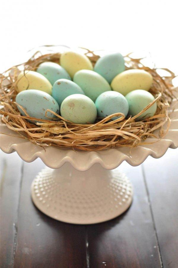 food, egg, easter egg, egg, produce,