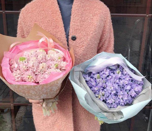 pink, flower, floristry, petal,