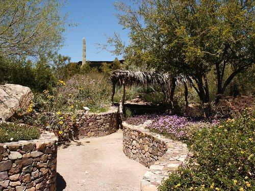Sonora Desert Museum, Tucson, Arizona