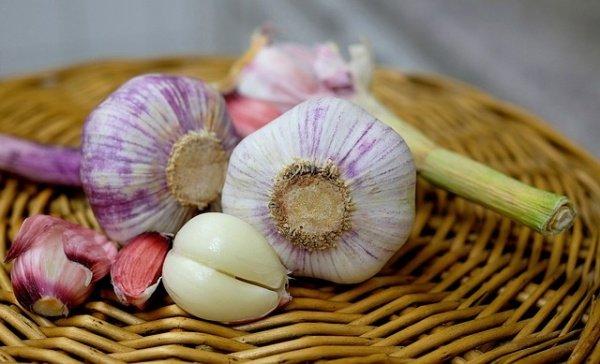 food, plant, produce, vegetable, flower,