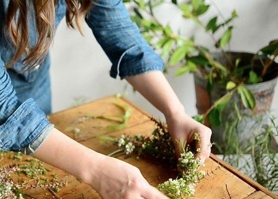 plant,soil,produce,