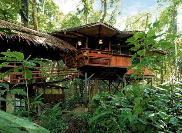 Tree House Lodge, Gandoca-Manzanillo Wildlife Refuge, Costa Rica