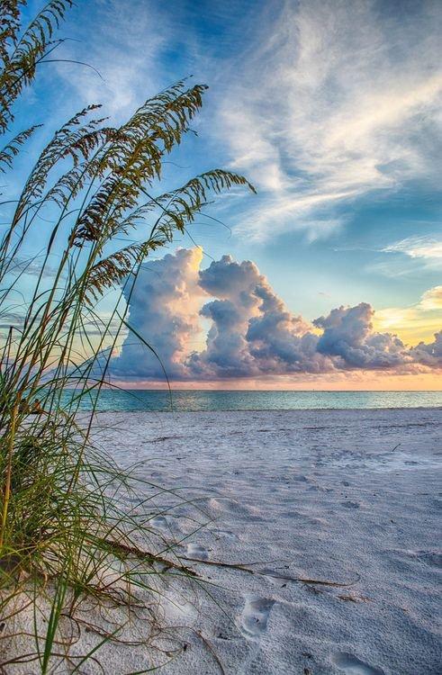 sky,nature,shore,sea,beach,