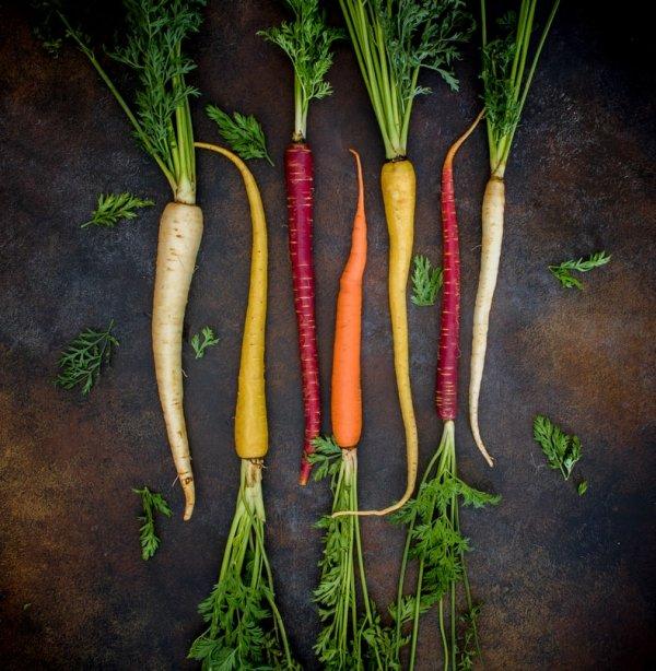 Carrot, Parsnip, Vegetable, Plant, Root vegetable,
