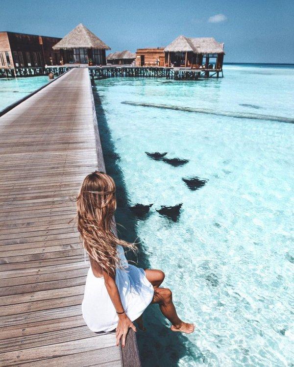 sea, body of water, vacation, ocean, water,