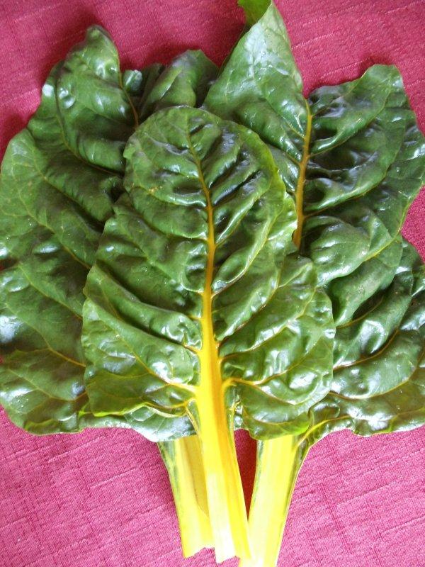 food,vegetable,produce,chard,leaf vegetable,