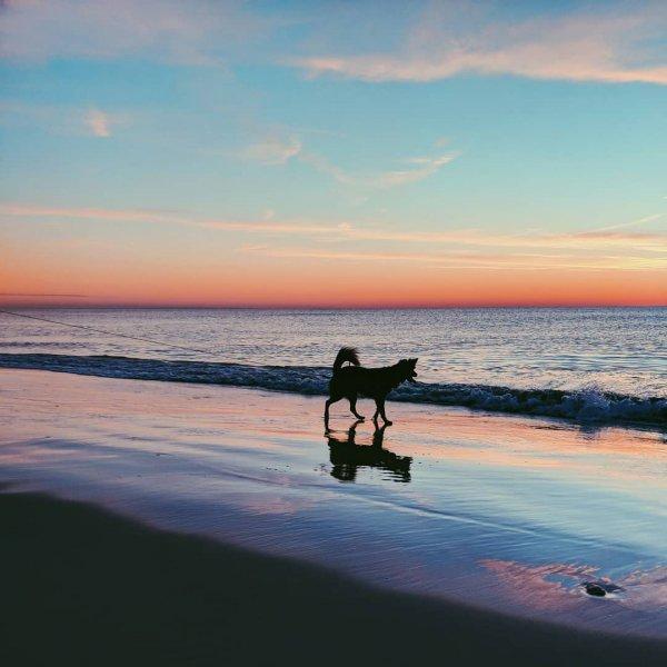 sea, body of water, sky, ocean, horizon,