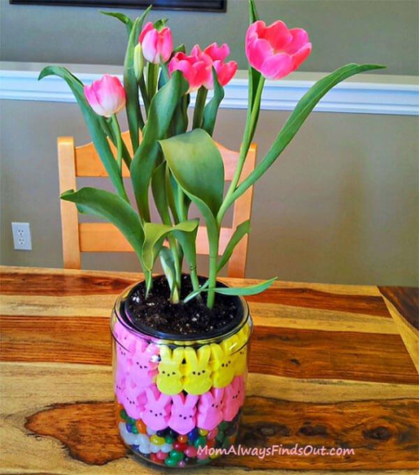 flower, plant, flower arranging, floristry, land plant,