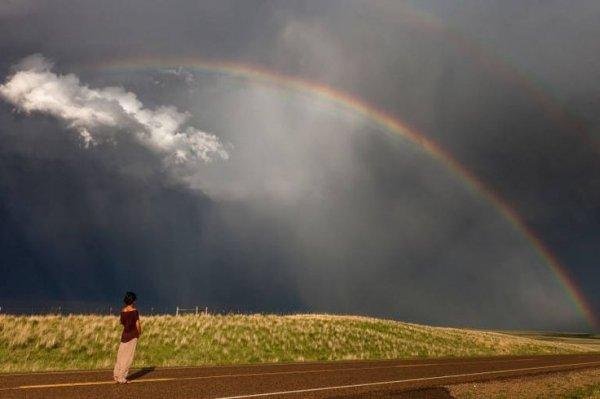 Rainbow: Take 2