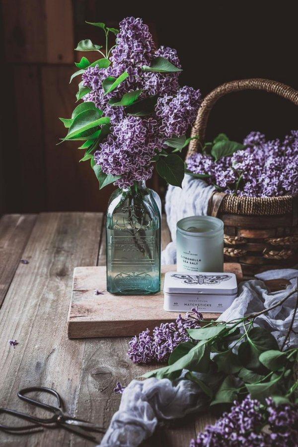 Purple, Flower, Lilac, Lavender, Still life,