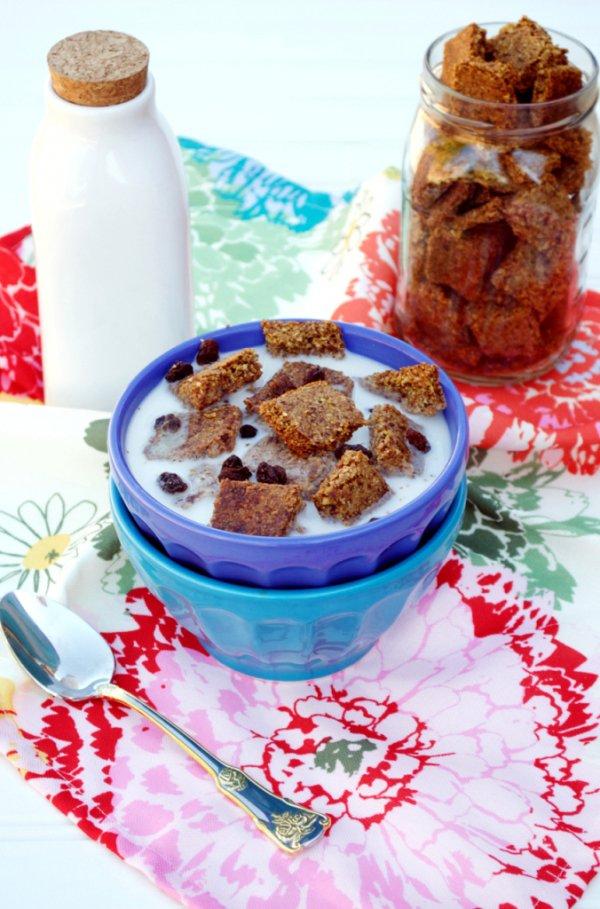 Grain-Free Raisin Bran Cereal