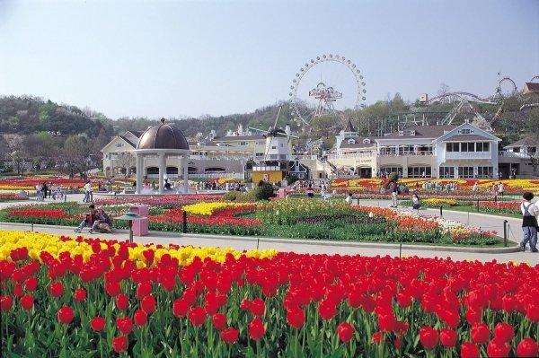 Everland, South Korea