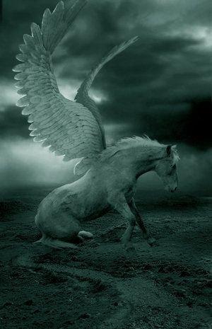 Pegasus - the Winged Horse