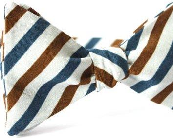 Multi Color Striped Bow Tie