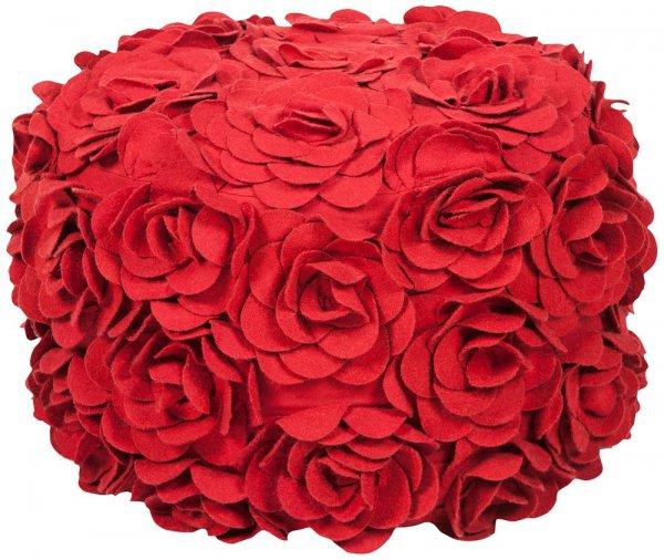 flower, red, plant, cut flowers, land plant,