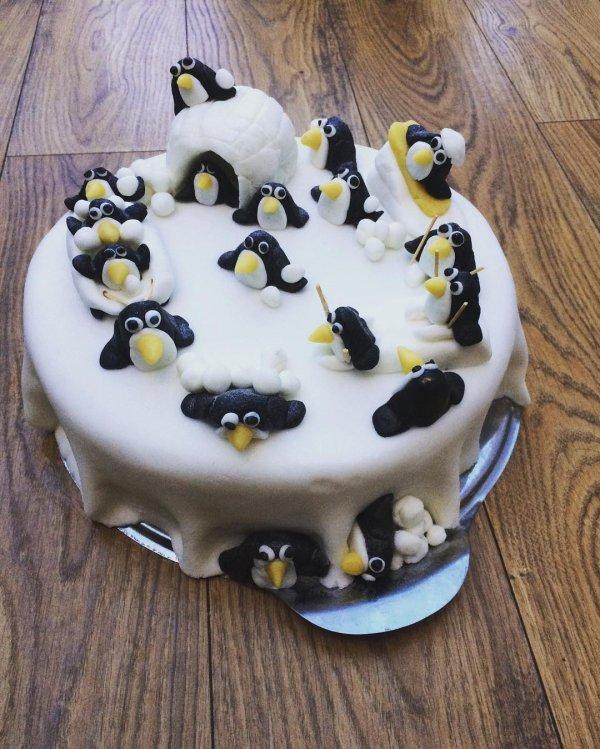 food, dessert, cake, sugar paste, icing,