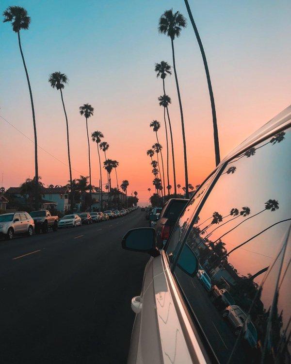 Sky, Morning, Sunset, Tree, Road,