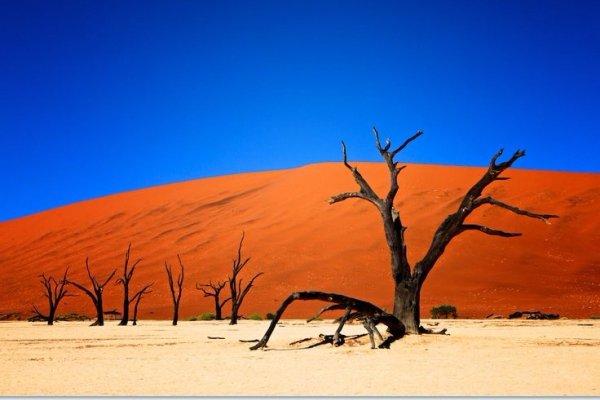 Namib-Naukluft Park in Namibia