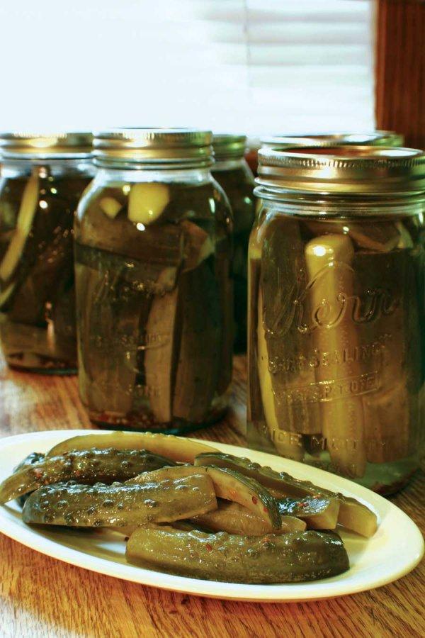 food preservation,pickling,food,canning,produce,
